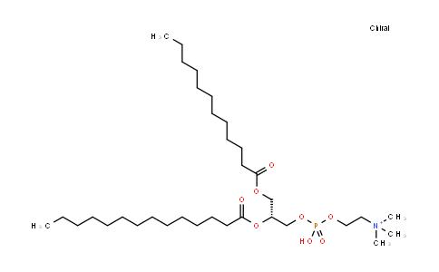 1-月桂酰-2-肉豆蔻酰基卵磷脂