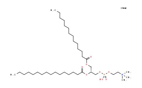 1-Myristoyl-2-palmitoyl-sn-glycero-3-phosphocholine