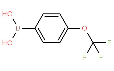 4-(Trifluoromethoxy)phenylboronic acid