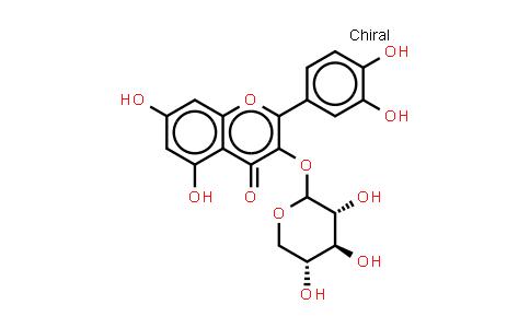 Quercetin 3-O-xyloside