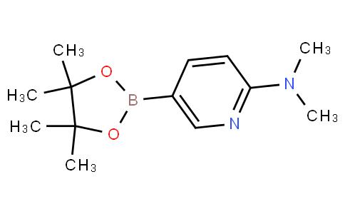 2-(二甲基氨基)吡啶-5-硼酸频哪酯