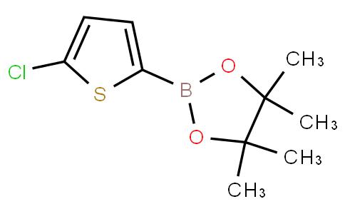 5-氯噻吩-2-硼酸频哪醇酯