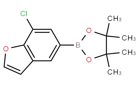 2-(7-chlorobenzofuran-5-yl)-4,4,5,5-tetramethyl-1,3,2-dioxaborolane