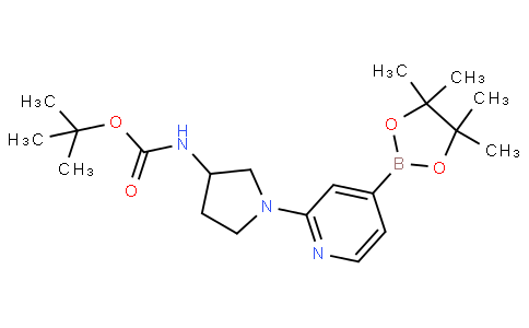 tert-butyl (1-(4-(4,4,5,5-tetramethyl-1,3,2-dioxaborolan-2-yl)pyridin-2-yl)pyrrolidin-3-yl)carbamate