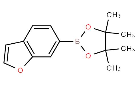 2-(benzofuran-6-yl)-4,4,5,5-tetramethyl-1,3,2-dioxaborolane