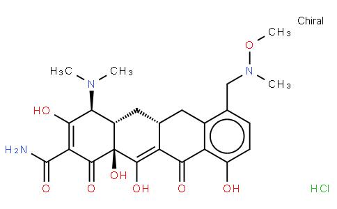 Sarecycline Hydrochloride
